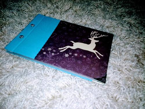 Vánoční album - modré