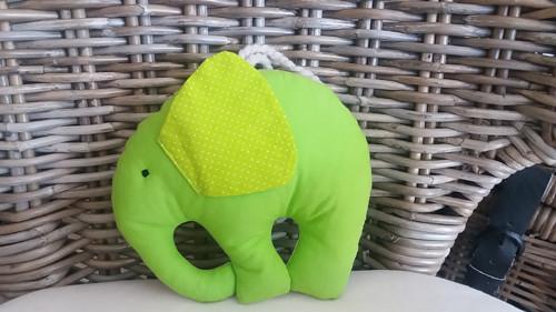 Slon ušatý