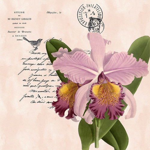 Panel látky Orchidej 45x45 cm