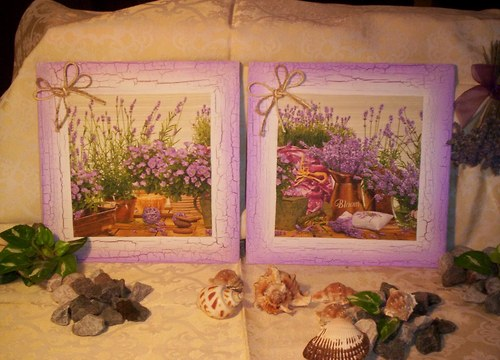 Levandule - dvojice obrázků - zahrádka