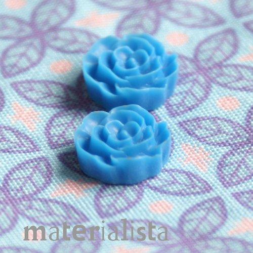 Růžičky modré