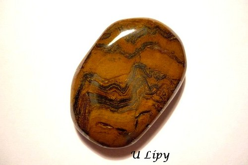Tromlovaná placka - tygří železo, č.180