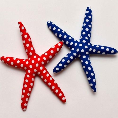Mořská hvězdice jakou si vyberete