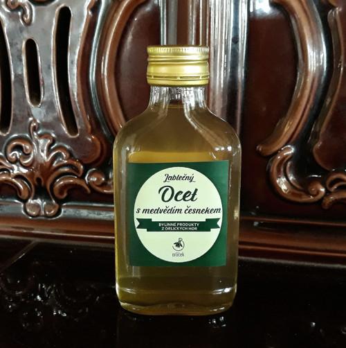Jablečný ocet s medvědím česnekem (100 ml)