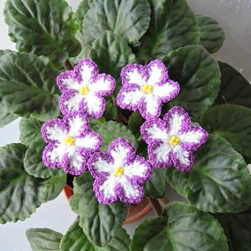 Háčkované fialky bílo-fialové zápich - 5ks