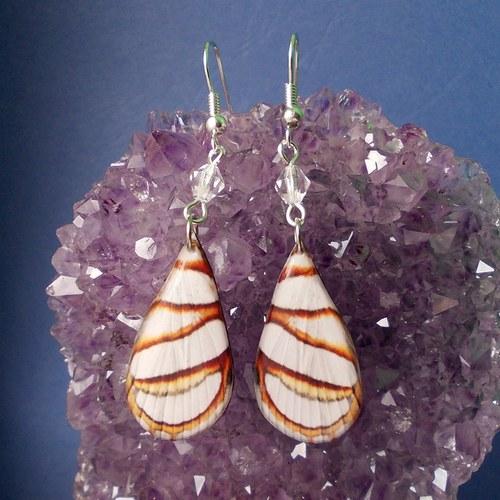 Náušnice motýl - mot19