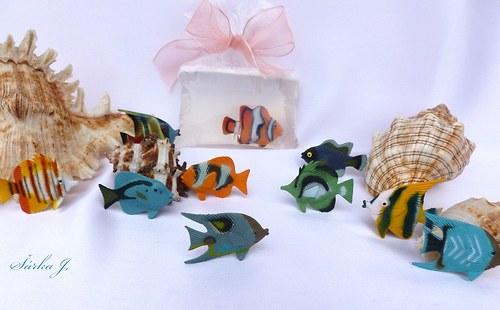 korálové rybky - do mýdel