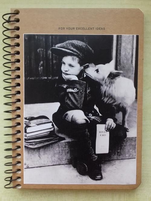 *** Zápisník - Mít tak psa ... ***