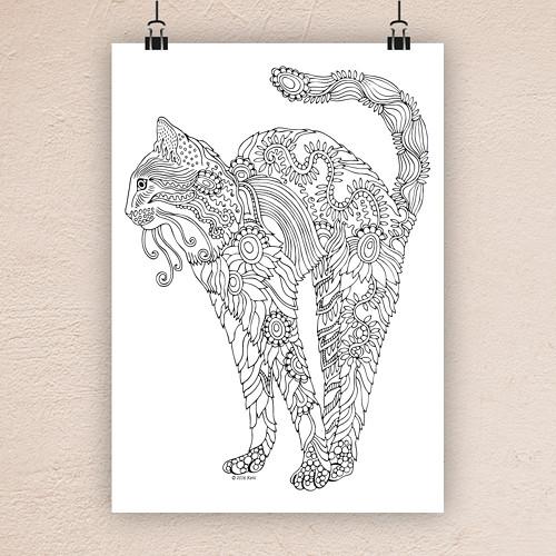 Kočka 5.