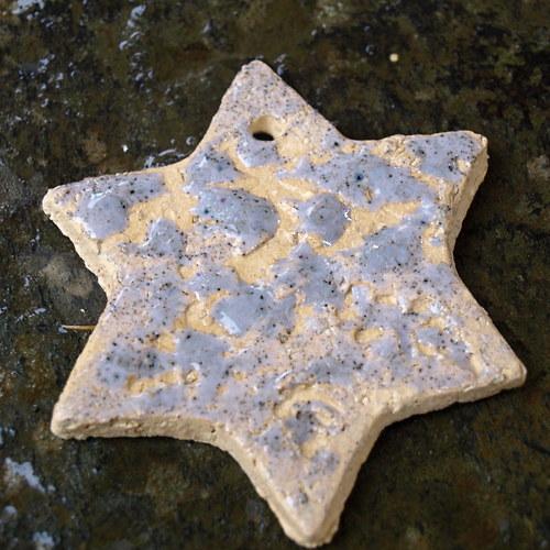 Hvězda modrofialková