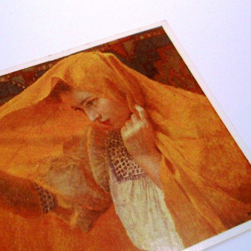 Bukovac PŘEKVAPENÁ - pohlednice č. 1052