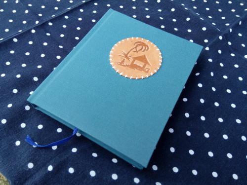 Robinsonův deník