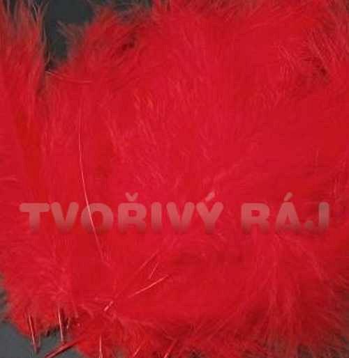 Pštrosí peří délka 12-17cm, červené