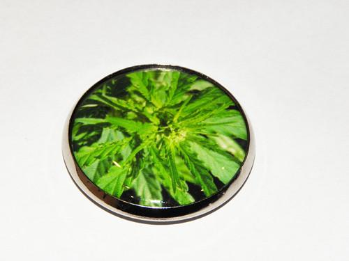 Zelený - magnet