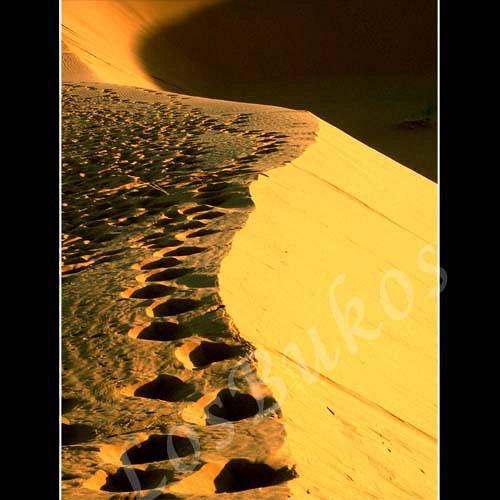 Stopy v písku