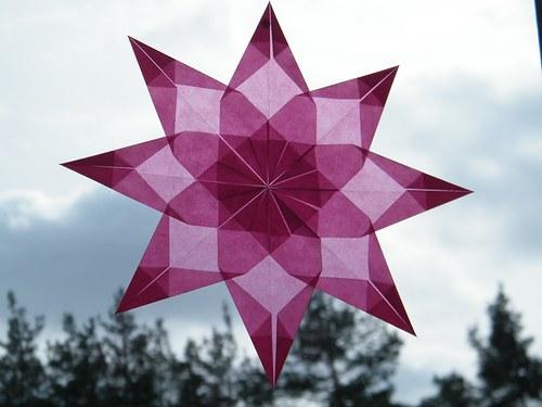 Růžová hvězda