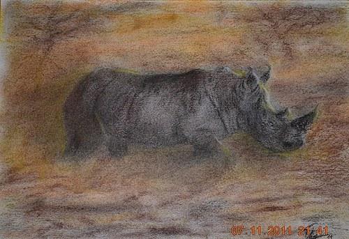 Valící se nosorožec
