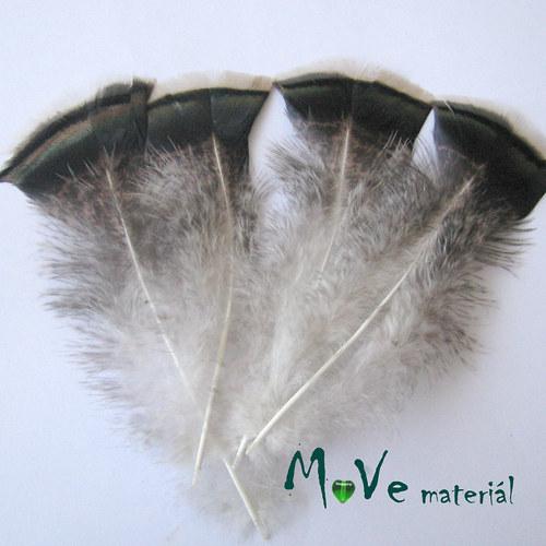 Krocaní peří hrudní 14-16cm,4ks přírodní