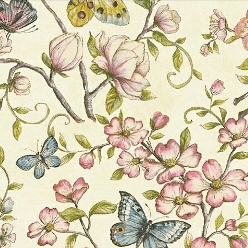 Motýlokvět