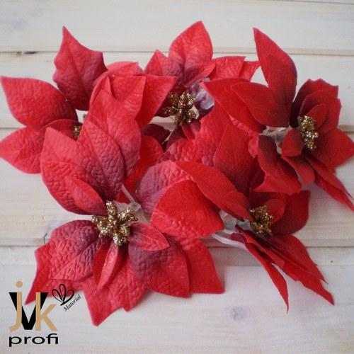 Vánoční hvězda květ - červený