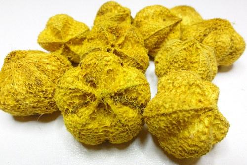 Pumpkin žlutý