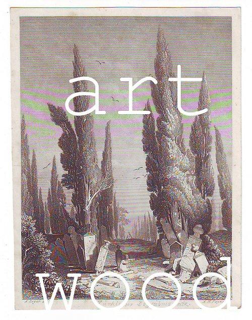 Vintage rytina - KRAJINA S POMNÍKY č.131