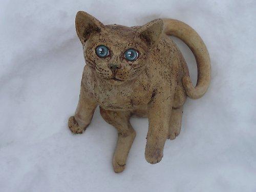 Kočka modroočka (na objednávku)