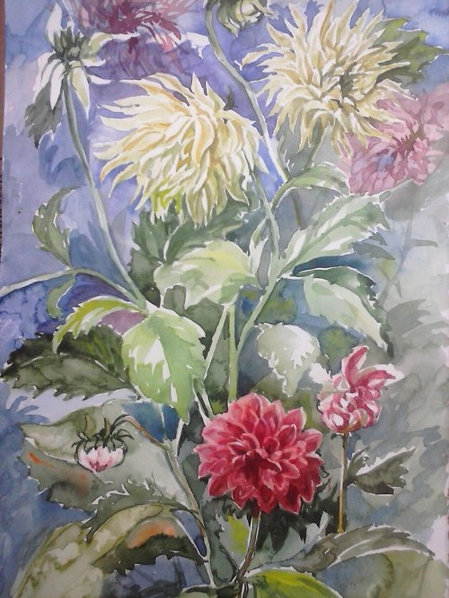 Květinová studie
