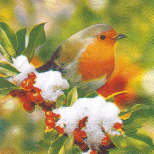 Ubrousek - ptáček na jeřabinách