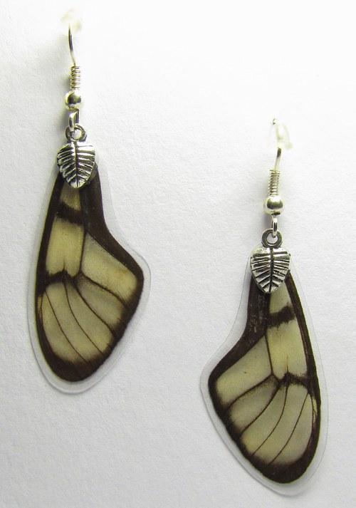 Motýlí náušnice