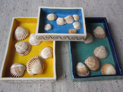 mořská krabička