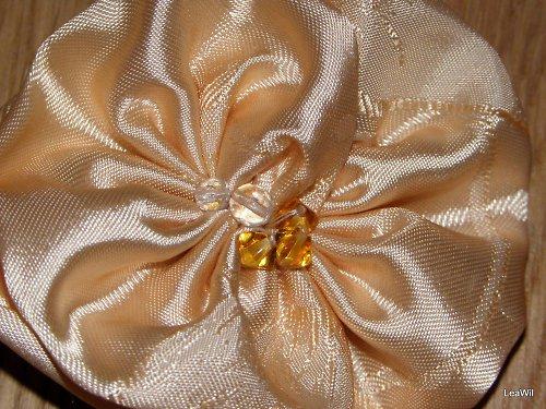 Meruňková růže