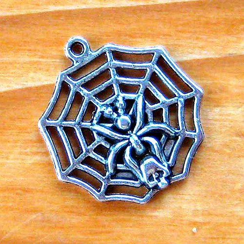Pavouk v pavučince