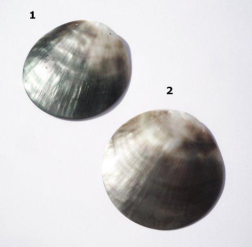 Perleťové kolečko s 2dírkami 50mm
