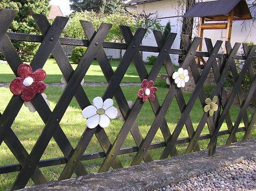 rozkvetlý plot