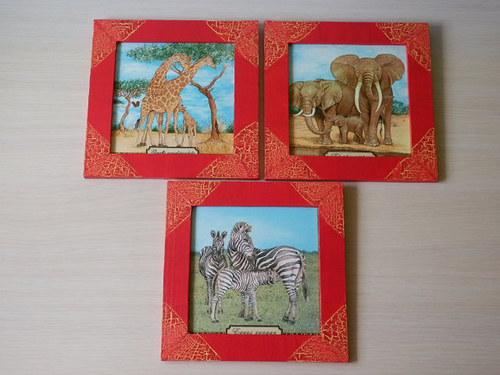 Obrázky Africká zvířata