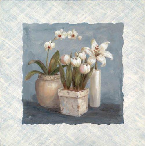 Reprodukce - tisk - Bílá orchidej 10x25cm - 9787A