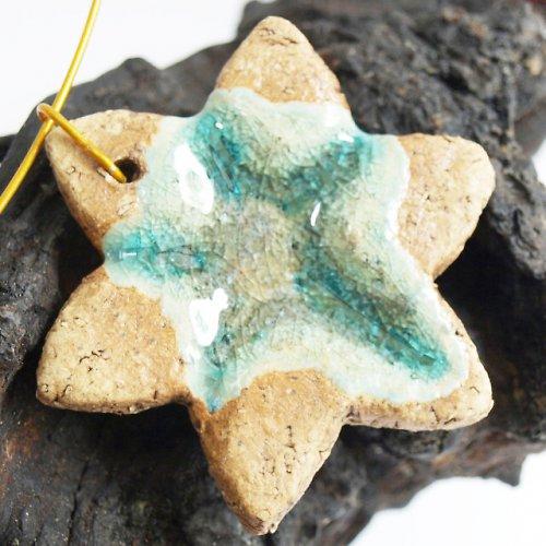Mořská hvězda