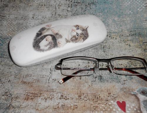 Pouzdro na brýle - kočička