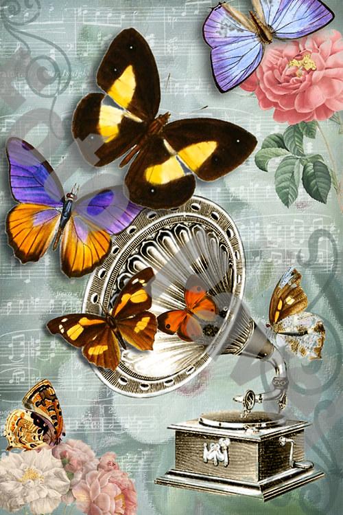 Vintage motiv - gramofon s motýlky 2
