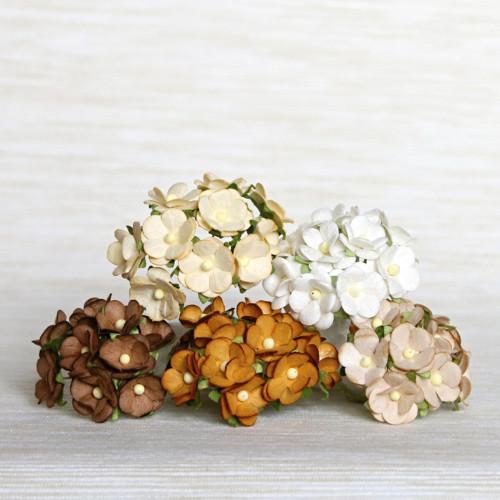 Papírové květy - hnědobílý mix 5 ks