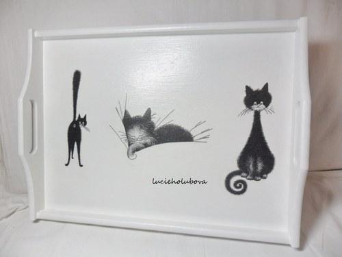 Kočičí podnos