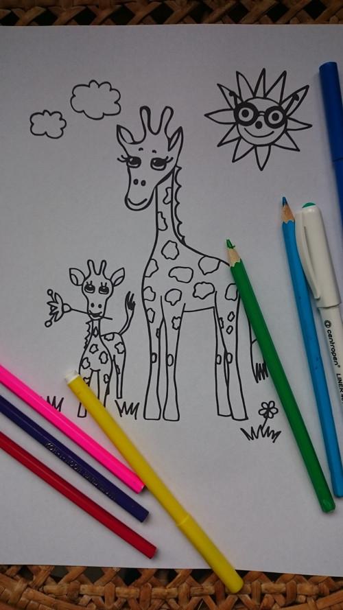 Omalovánky : Žirafy