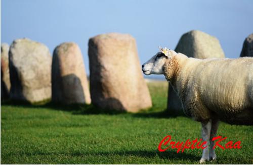 Švédské Stonehenge