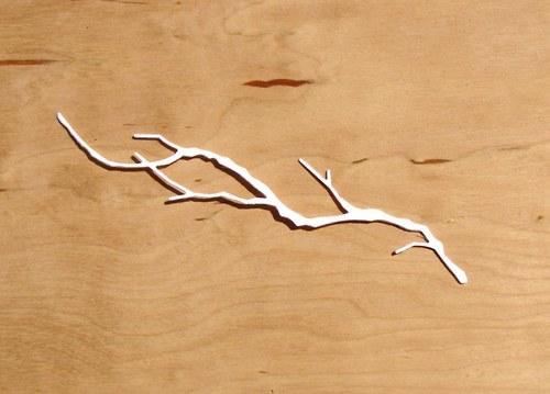 Větev úzká dlouhá