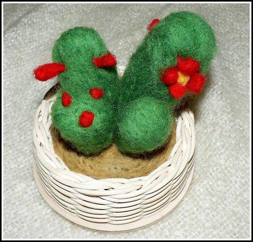 Kaktus v proutí :)