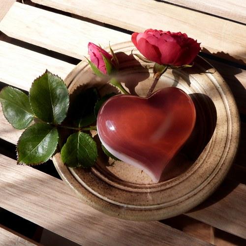 Srdíčko baculaté_růžové dřevo