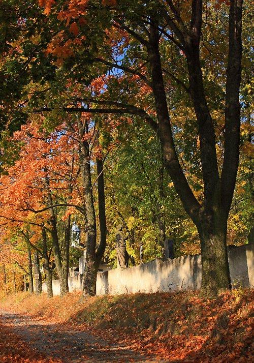 Podzim za zdí