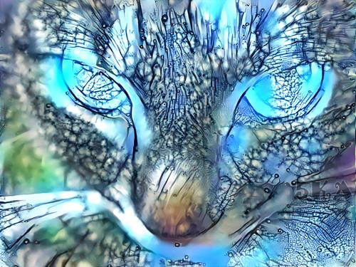 Kind of BLUE - Autorská fotografie s efekty
