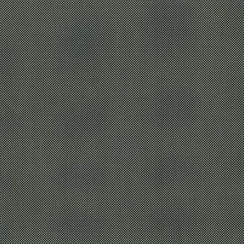 Black Currant - sb čtvrtka 12x12
